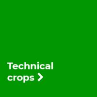 uvodní_technické plodiny_EN